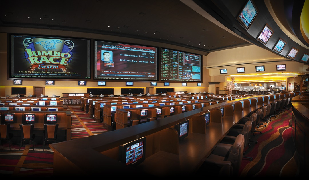 vegas betting sports online